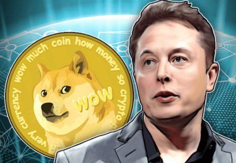 американец разбогател на мемном Dogecoin благодаря твитам Маска